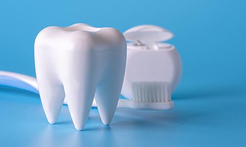 メンテナンス管理 い歯科 大阪西区 九条の歯医者